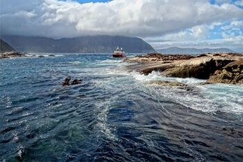 Duiker Island, Hout Bay, Cape Town